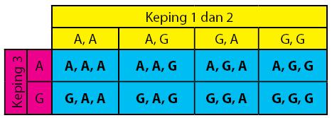 Materi peluang smp ruang sampel tiga keping uang cara 2 menentukan banyaknya ruang sampel dengan diagram pohon ccuart Gallery