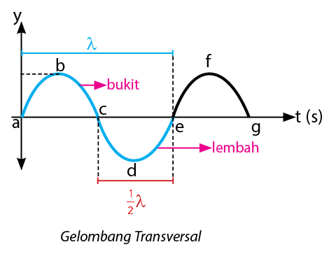 Gelombang Transversal Dan Longitudinal