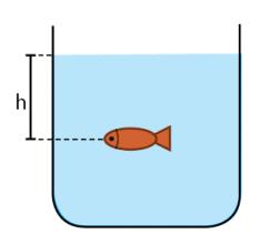 rumus tekanan hidrostatis