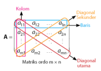 Pengertian dan Jenis-jenis Matriks