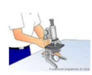 Cara menggunakan mikroskop dan bagian bagiannya