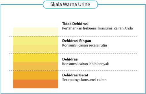 Skala Warna Urine
