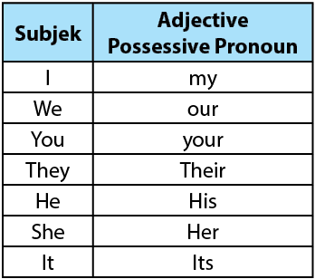 Adjective Possessive Pronoun