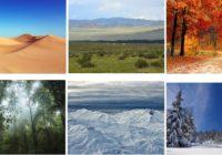 7 Jenis Bioma di Dunia