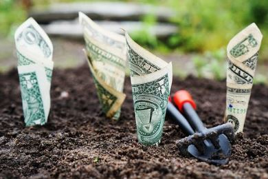 Perubahan Suku Bunga dan Tingkat Investasi