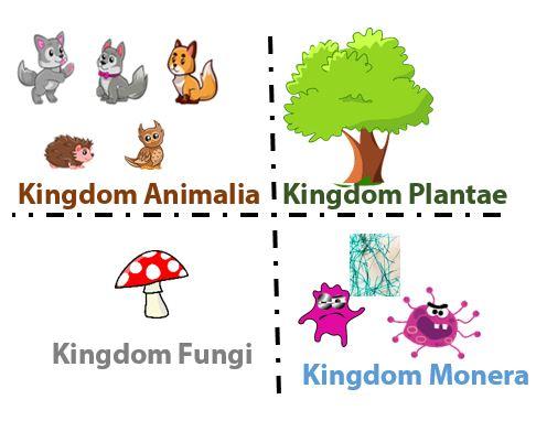 Sistem Empat Kingdom