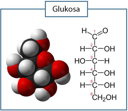 Cara Menentukan Rumus Molekul Senyawa Idschool