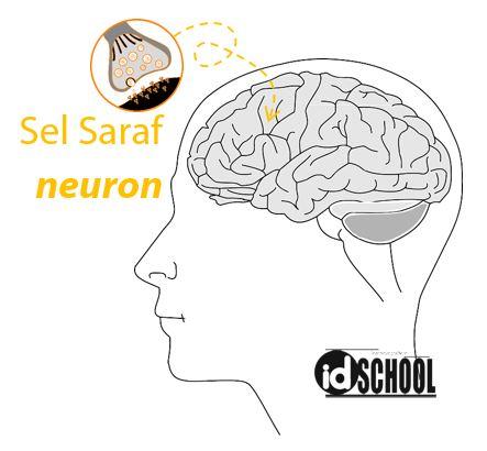 Sel Saraf - Neuron