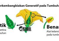 Perkembangbiakan Generatif Tumbuhan