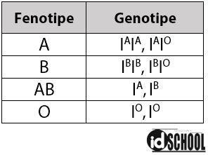 Genotipe Golongan Darah