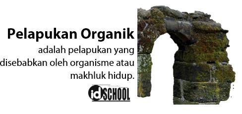 Pelapukan Organik