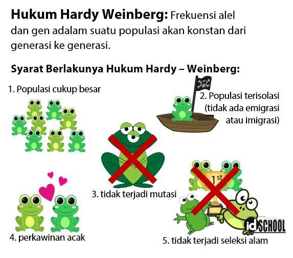 Syarat Berlakunya Hukum Hardy Weinberg