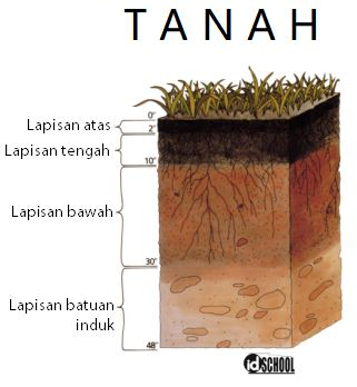 Jenis-Jenis Tanah di Indonesia dan Persebarannya