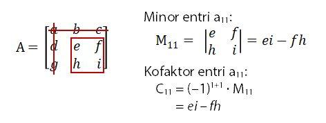 Minor dan Kofaktor Entri a11
