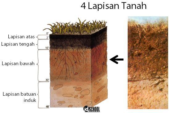 Bagian-Bagian Tanah