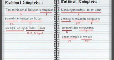 Perbedaan Kalimat Simpleks dan Kompleks